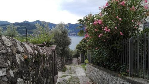 https://metasearch.in-lombardia.it/mss/mss_renderimg.php?id=40063&src=222a8c327522660055aa78fb2bc1ff86.jpg