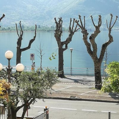 https://metasearch.in-lombardia.it/mss/mss_renderimg.php?id=41539&src=f79109057bf0ff4627a80a2f624e93a5.jpg