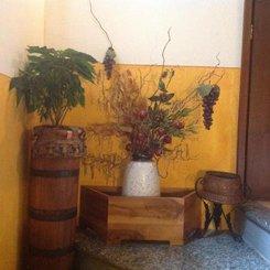 AGRITURISMO BARCOLA DI GUAITA MARGHERITA CRISTINA