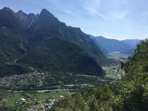 https://metasearch.in-lombardia.it/mss/mss_renderimg.php?id=42572&src=bd2dfaf4a3d0915ce4c21b6ae5e6143e.jpg