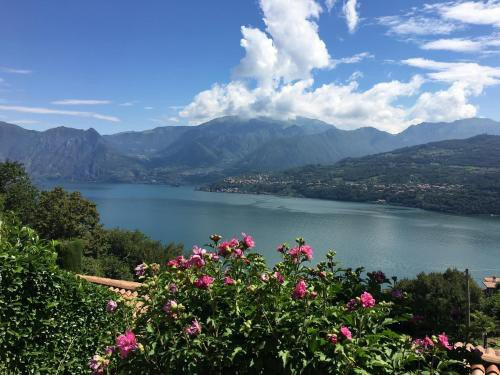 https://metasearch.in-lombardia.it/mss/mss_renderimg.php?id=44065&src=2c7cac1bc662996530b5a3da9c790aed.jpg