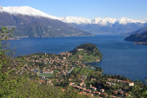 https://metasearch.in-lombardia.it/mss/mss_renderimg.php?id=48598&src=c11948cde0456303f7065e91f780acdf.jpg