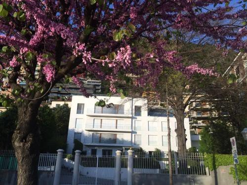 https://metasearch.in-lombardia.it/mss/mss_renderimg.php?id=48696&src=38c21afe6800edb95dccdfc70259f609.jpg